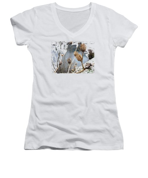 Along The River Women's V-Neck T-Shirt
