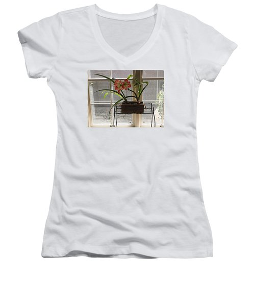 Women's V-Neck T-Shirt (Junior Cut) featuring the photograph Amaryllis And Window by Nancy Kane Chapman