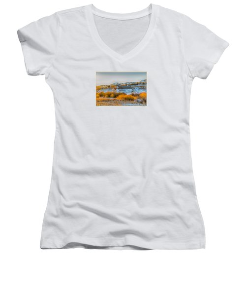 Women's V-Neck T-Shirt (Junior Cut) featuring the photograph Amber Grass by R Thomas Berner