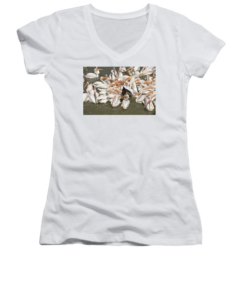 American White Pelicans Women's V-Neck T-Shirt (Junior Cut) by Eunice Gibb