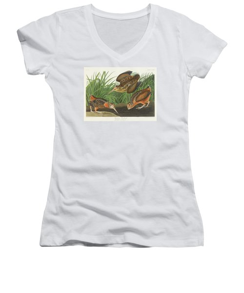 American Woodcock Women's V-Neck (Athletic Fit)