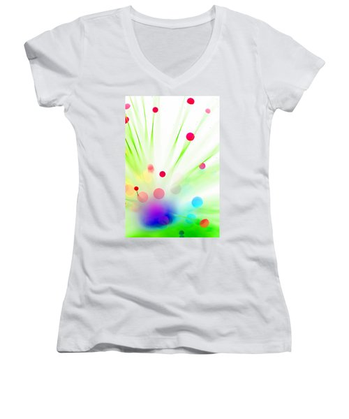 Among The Wildflowers Women's V-Neck T-Shirt