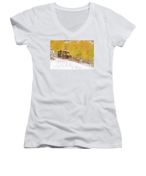 An Example Of Etiolated Nostalgia  Women's V-Neck T-Shirt (Junior Cut) by Bijan Pirnia