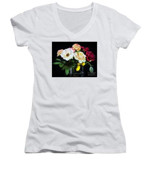 An Informal Study Women's V-Neck T-Shirt