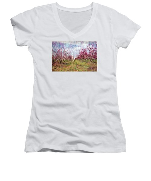 An Orchard In Blossom In The Golan Heights Women's V-Neck