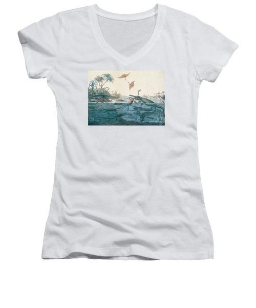 Ancient Dorset Women's V-Neck T-Shirt