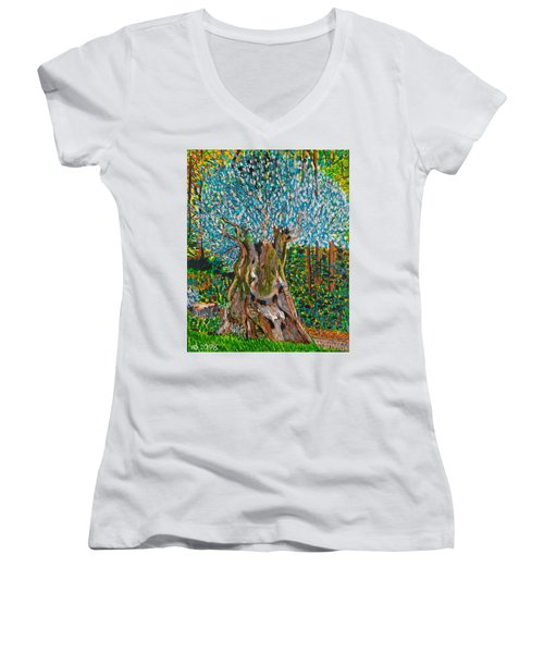 Ancient Olive Tree Women's V-Neck T-Shirt
