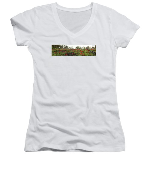 Anemones Forest Panorama Women's V-Neck T-Shirt (Junior Cut) by Yoel Koskas
