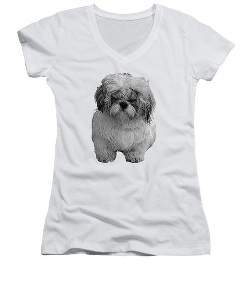 Angry Dog II Women's V-Neck (Athletic Fit)