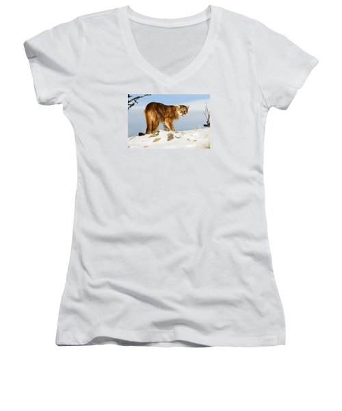 Angry Mountain Lion Women's V-Neck