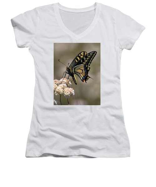 Anise Swallowtail Women's V-Neck (Athletic Fit)