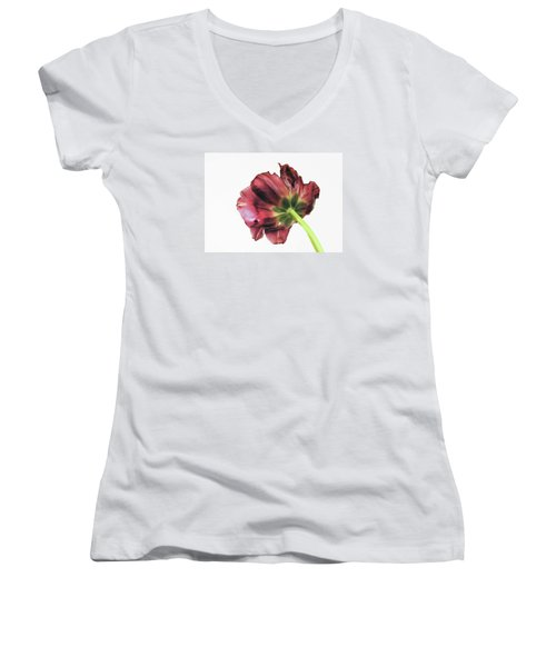 Another Point Of View Women's V-Neck (Athletic Fit)