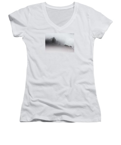 Women's V-Neck T-Shirt (Junior Cut) featuring the photograph Another World by Dana DiPasquale