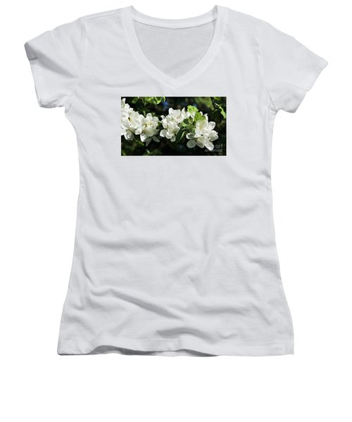 Apple Blossoms 2017 Women's V-Neck (Athletic Fit)