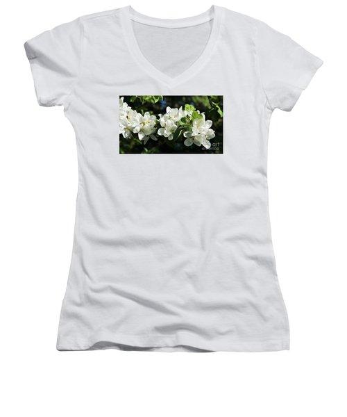 Apple Blossoms 2017 Women's V-Neck T-Shirt