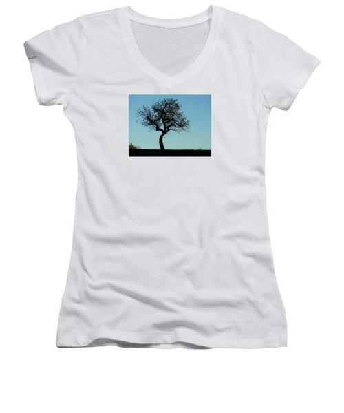 Apple Tree In November Women's V-Neck T-Shirt (Junior Cut) by Ernst Dittmar