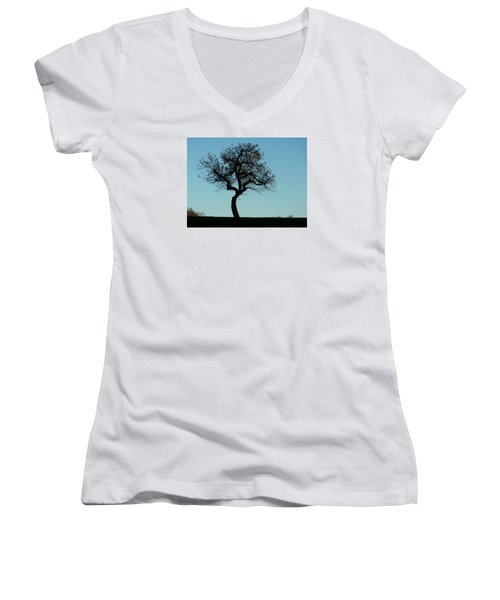 Apple Tree In November Women's V-Neck (Athletic Fit)