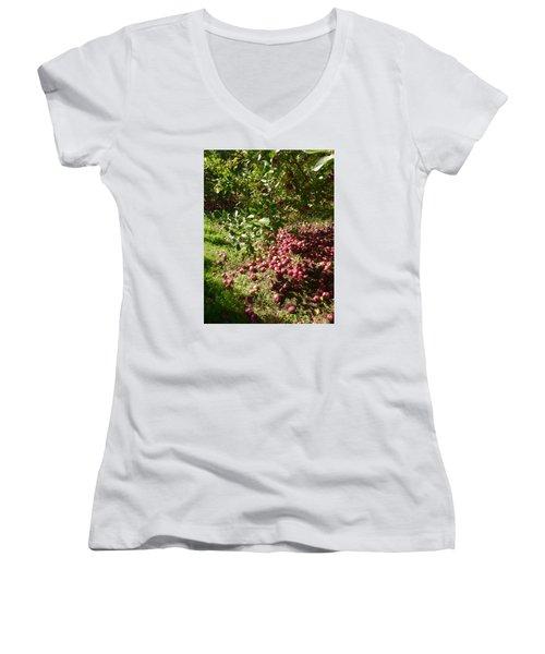 Apples...apples...everywhere Women's V-Neck T-Shirt