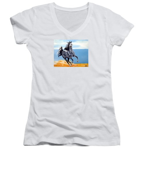 Arabian Dreams Women's V-Neck T-Shirt