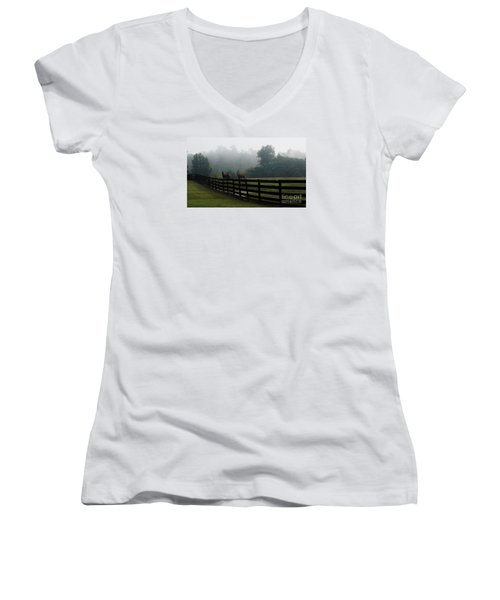 Arabian Horse Landscape Women's V-Neck T-Shirt (Junior Cut) by Debra Crank