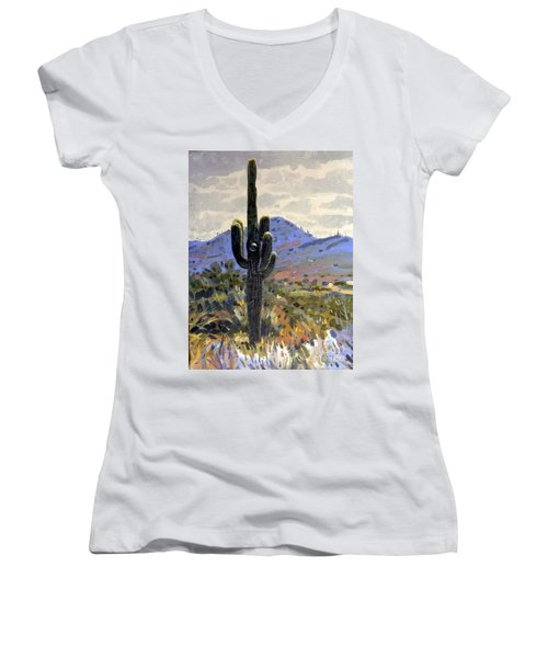 Arizona Icon Women's V-Neck T-Shirt (Junior Cut) by Donald Maier