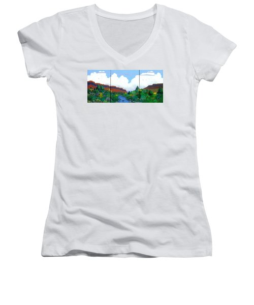 Arizona Sky Women's V-Neck T-Shirt (Junior Cut) by Bernard Goodman