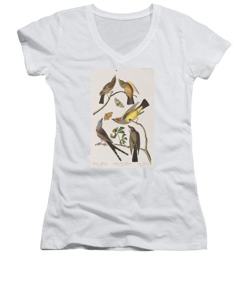 Arkansaw Flycatcher Swallow-tailed Flycatcher Says Flycatcher Women's V-Neck (Athletic Fit)