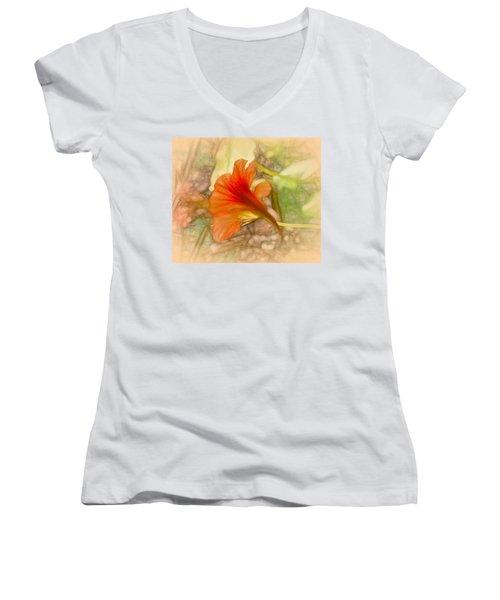 Artistic Red And Orange Women's V-Neck T-Shirt