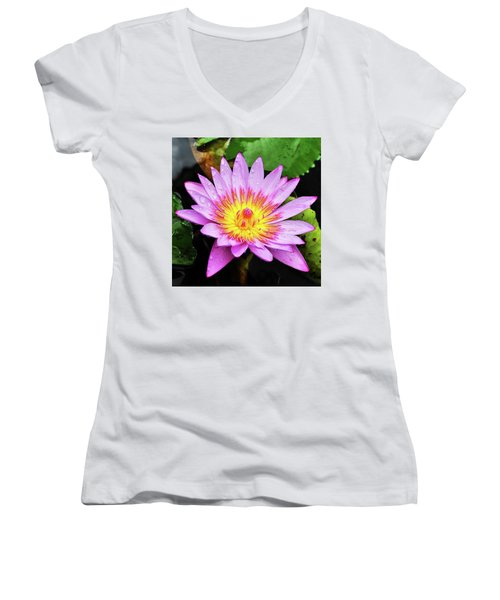 Water Lily Women's V-Neck T-Shirt