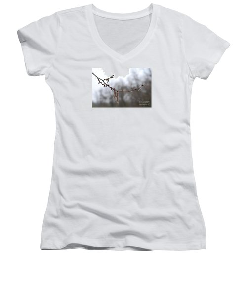 Women's V-Neck T-Shirt (Junior Cut) featuring the photograph Aspen Catkins 20120316_15a by Tina Hopkins