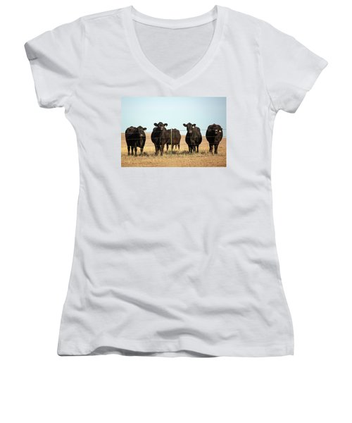 At The Fence Women's V-Neck