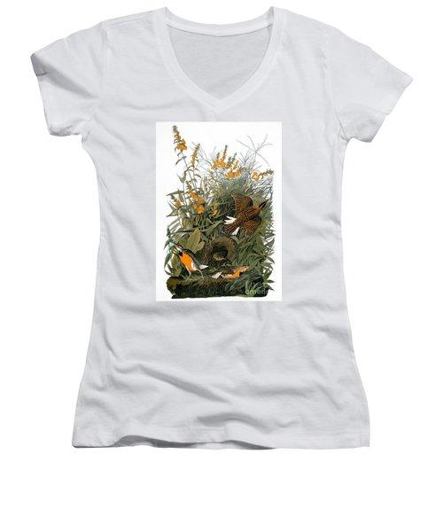 Audubon: Meadowlark Women's V-Neck T-Shirt