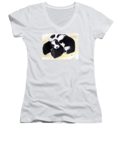 Australian Cattle Dog Puppies Women's V-Neck