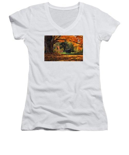 Autumn Brilliance Women's V-Neck T-Shirt (Junior Cut) by Tricia Marchlik