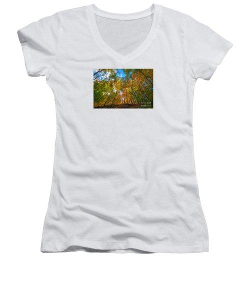 Autumn Colors  Women's V-Neck T-Shirt (Junior Cut) by Michael Ver Sprill
