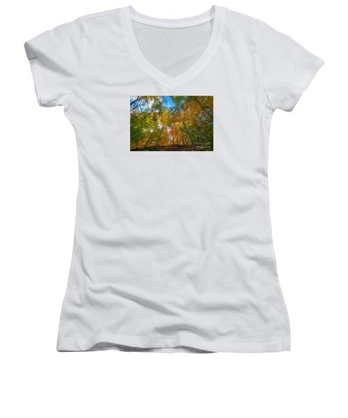 Autumn Colors  Women's V-Neck T-Shirt (Junior Cut)