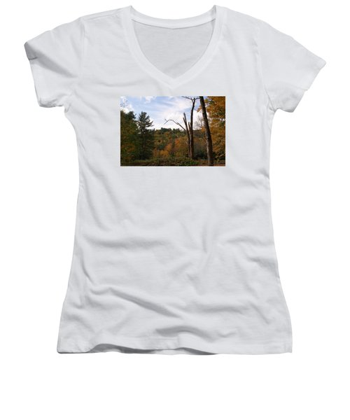 Autumn In The Hills Women's V-Neck T-Shirt (Junior Cut) by Lois Lepisto