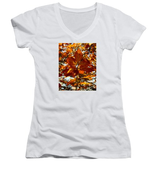 Women's V-Neck T-Shirt (Junior Cut) featuring the photograph Autumn Leaves by Karen Harrison