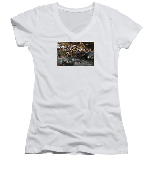 Women's V-Neck T-Shirt (Junior Cut) featuring the drawing Autumn Soup by Diane E Berry
