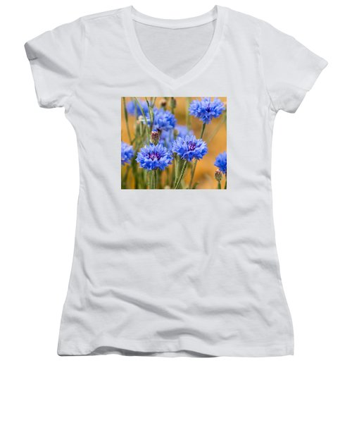 Bachelor Buttons In Blue Women's V-Neck T-Shirt