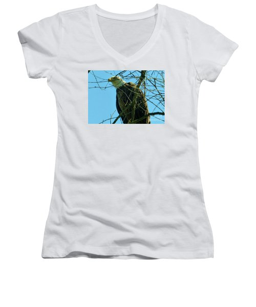 Bald Eagle Keeping Guard Women's V-Neck
