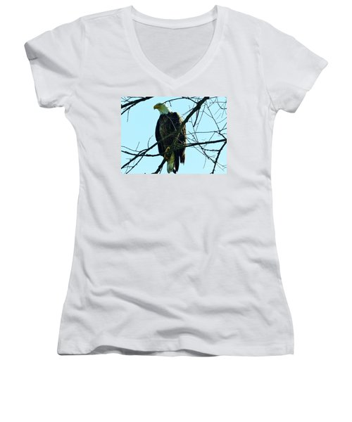 Bald Eagle Over The Root River Women's V-Neck
