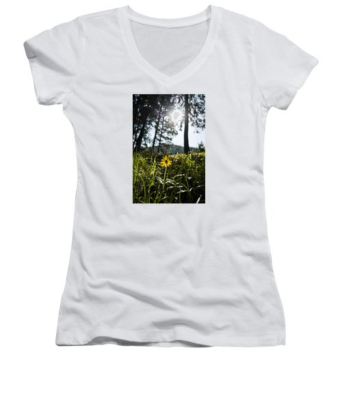 Balsamroot Women's V-Neck
