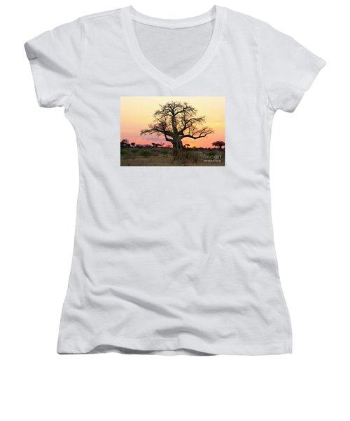 Baobab Tree At Sunset  Women's V-Neck (Athletic Fit)