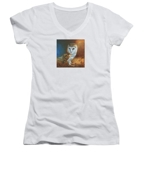 Barn Owl Blue Women's V-Neck T-Shirt