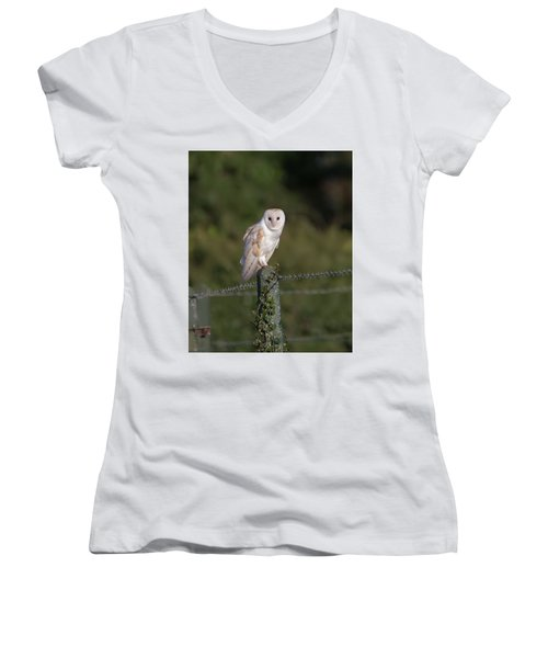 Barn Owl On Ivy Post Women's V-Neck