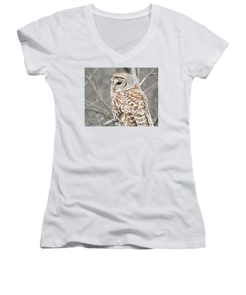 Barred Owl Close-up Women's V-Neck T-Shirt (Junior Cut) by Kathy M Krause