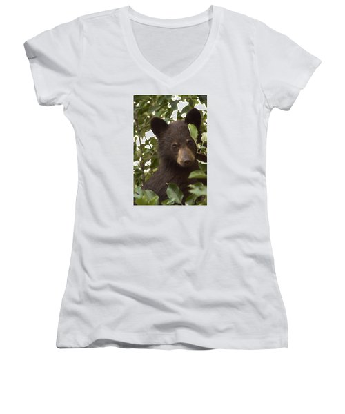 Bear Cub In Apple Tree7 Women's V-Neck (Athletic Fit)
