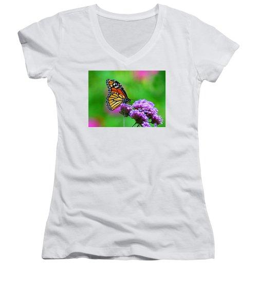 Beautiful Monarch Women's V-Neck