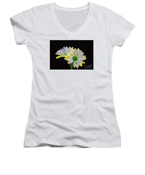 Beautiful Wonder Women's V-Neck T-Shirt (Junior Cut) by Ray Shrewsberry